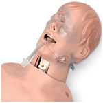 Critical Airway Management Trainer, With Torso, Adult