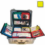 Thomas BLS Hard Case, 20 1/2inch x 16 3/4inch x 8 1/2inch, Yellow
