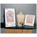 Deluxe Auscultation Training Station, incl. Trainer, SmartScope and Practice Boards