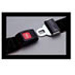 Strap, Polypropylene, Metal Push Button Buckle, 9 foot, 1 Piece, Black