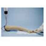 Life/form Replacement Arm Skin and Veins, for Training Arm, Adult