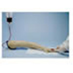 Life/form Replacement Arm Veins Only for Training Arm, Adult