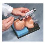 Neonatal Intubation Trainer
