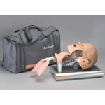 Intubation Trainer, w/Carrying Case, Access Tray and Lubricant