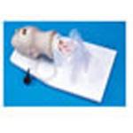 Airway Larry Trainer Head w/Pump Spray Lubricant