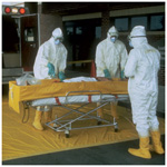EMS Decontamination System, Disposable