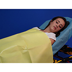 "Taylor's Emergency Blanket, Disp, Individually Packaged, 60"" x 90"""