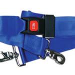 Straps, Nylon, Metal Push Button Buckle, 2 Piece w/Swivel Speed Clip, Blue, 5 feet