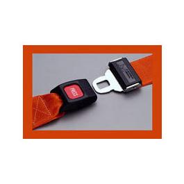 Strap, Vinyl Antibacterial, Metal Push Button Buckle, 1 Piece, Orange, 9 feet