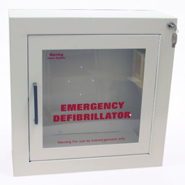 AED Cabinet Alarm Key, For Older Cabinets only | Bound Tree Medical